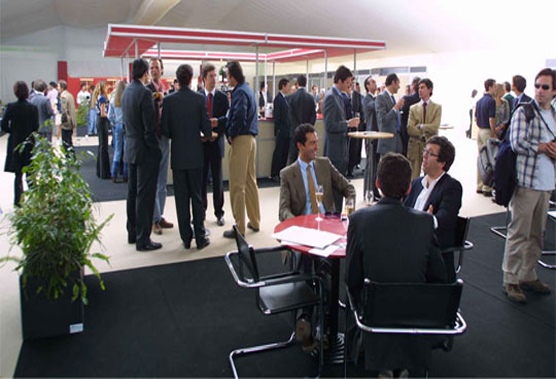 Networking Profesional y Profesionales